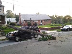 Tree branch, meet Jeep Cherokee