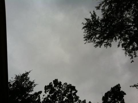 20111002-120238.jpg