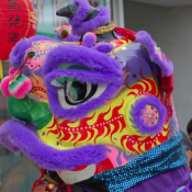 Celebrate Chinese New Year on Sunday, January 22nd in Media