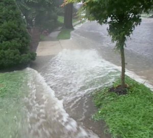 North Olive Street Storm water issues